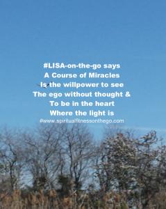 #LISA-on-the-go ACIM